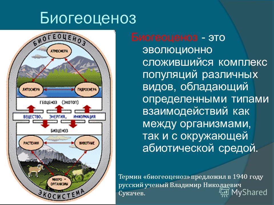 Биогеоценоз Биогеоценоз - это эволюционно сложившийся комплекс популяций различных видов, обладающий определенными типами взаимодействий как между организмами, так и с окружающей абиотической средой. Термин «биогеоценоз» предложил в 1940 году русский
