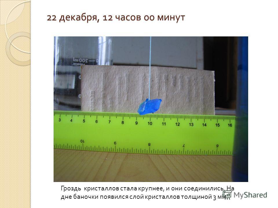 22 декабря, 12 часов 00 минут Гроздь кристаллов стала крупнее, и они соединились. На дне баночки появился слой кристаллов толщиной 3 мм.