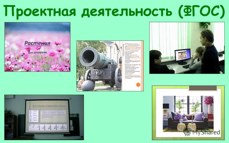 Проектная деятельность (ФГОС)