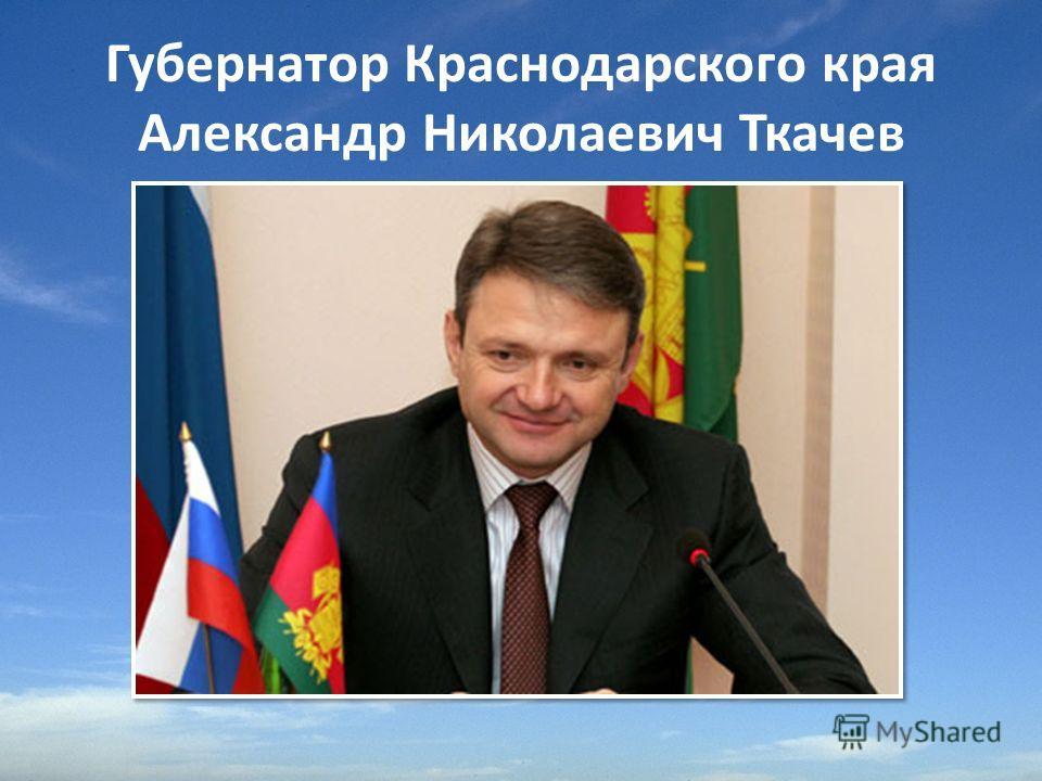 Губернатор Краснодарского края Александр Николаевич Ткачев