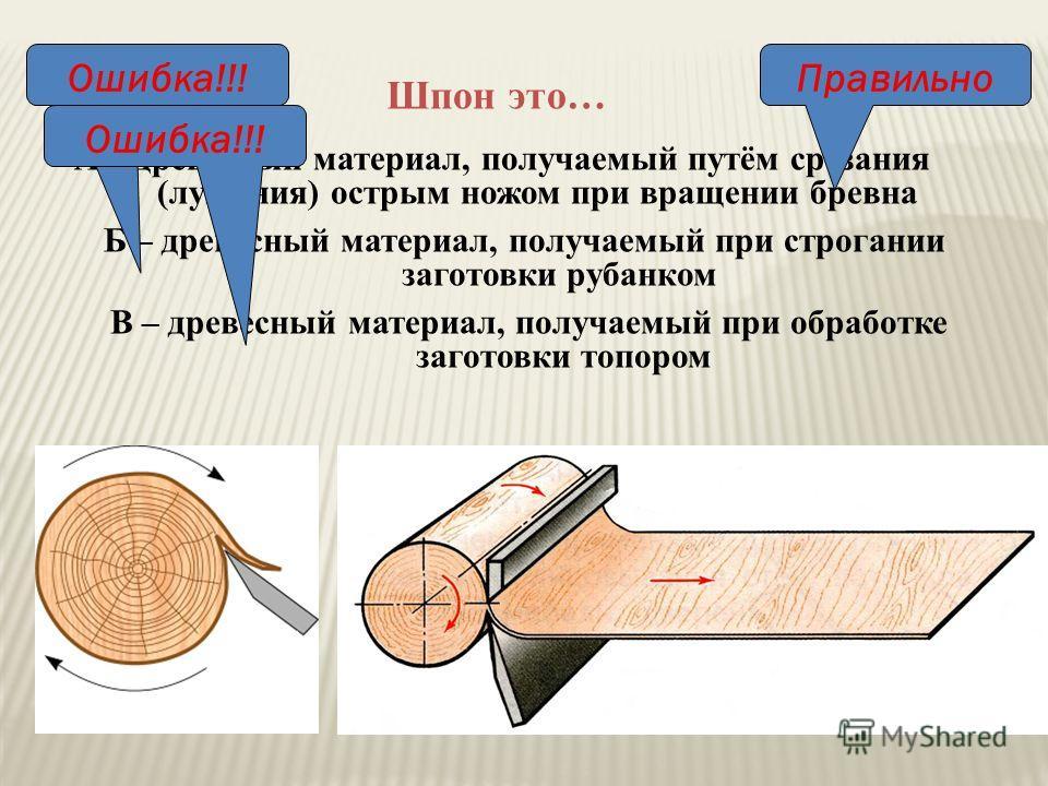 А – древесный материал, получаемый путём срезания (лущения) острым ножом при вращении бревна Шпон это… В – древесный материал, получаемый при обработке заготовки топором Б – древесный материал, получаемый при строгании заготовки рубанком ПравильноОши