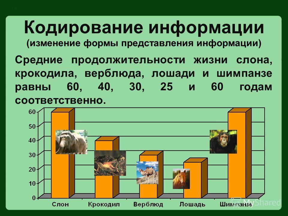 Средние продолжительности жизни слона, крокодила, верблюда, лошади и шимпанзе равны 60, 40, 30, 25 и 60 годам соответственно. Кодирование информации (изменение формы представления информации)