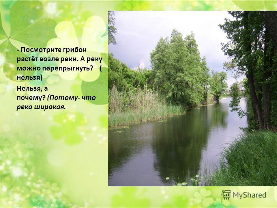 - Посмотрите грибок растёт возле реки. А реку можно перепрыгнуть? ( нельзя) Нельзя, а почему? (Потому- что река широкая.
