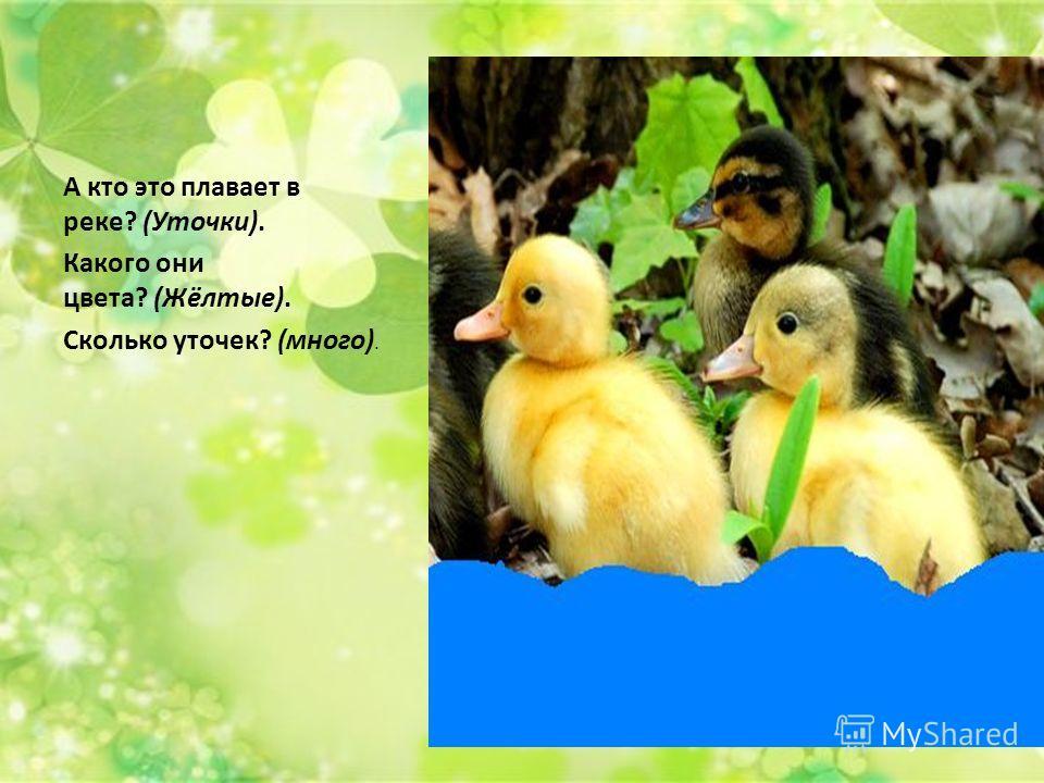 А кто это плавает в реке? (Уточки). Какого они цвета? (Жёлтые). Сколько уточек? (много).