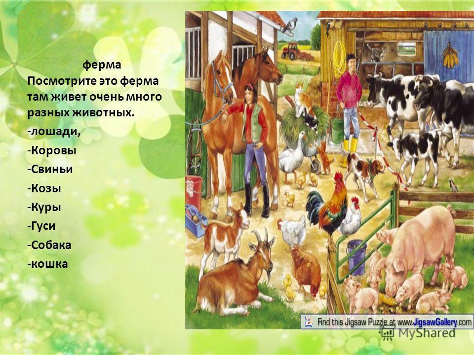 ферма Посмотрите это ферма там живет очень много разных животных. -лошади, -Коровы -Свиньи -Козы -Куры -Гуси -Собака -кошка