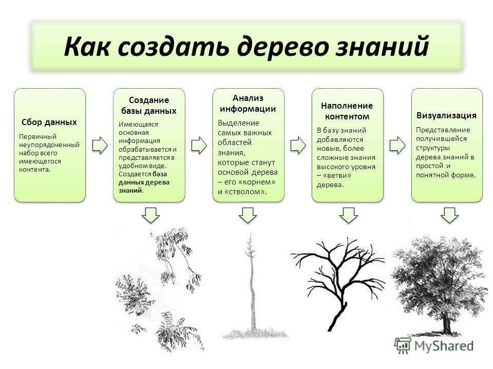 Как создать дерево знаний Сбор данных Первичный неупорядоченный набор всего имеющегося контента. Создание базы данных Имеющаяся основная информация обрабатывается и представляется в удобном виде. Создается база данных дерева знаний. Анализ информации