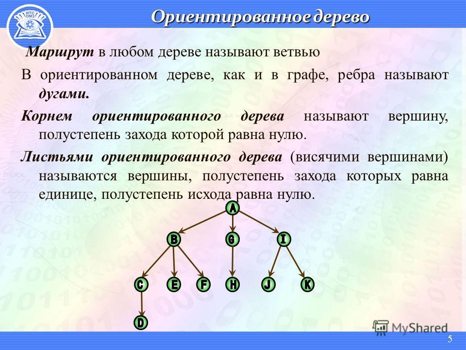 Маршрут в любом дереве называют ветвью В ориентированном дереве, как и в графе, ребра называют дугами. Корнем ориентированного дерева называют вершину, полустепень захода которой равна нулю. Листьями ориентированного дерева (висячими вершинами) назыв