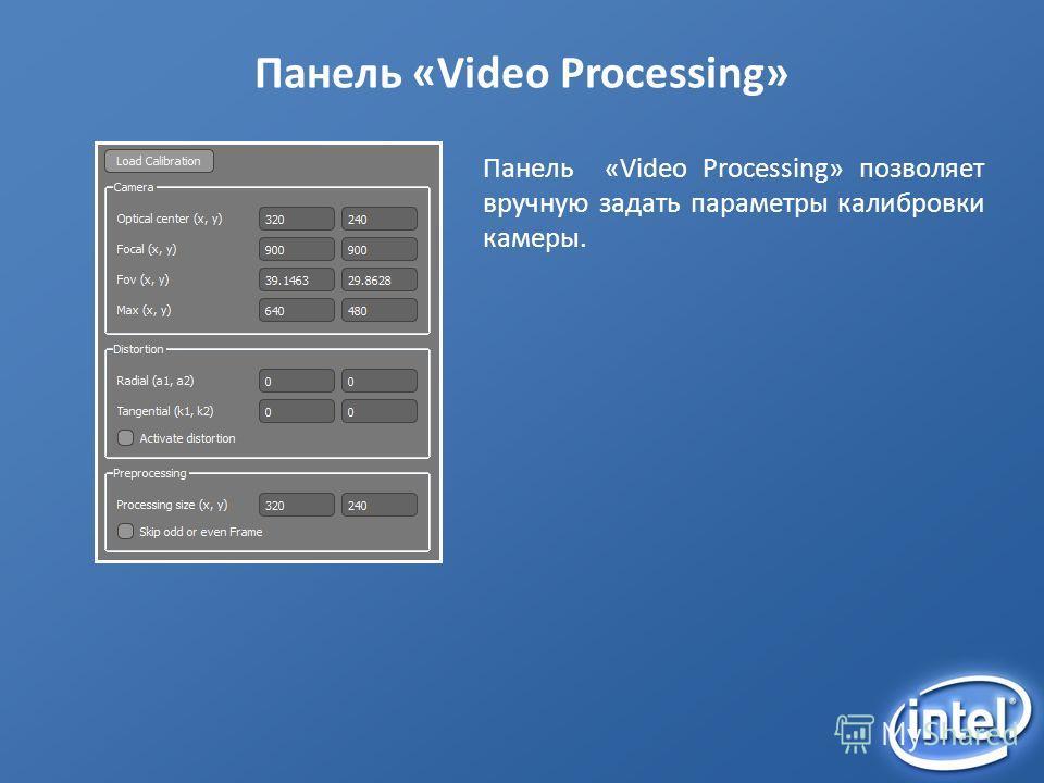 Панель «Video Processing» Панель «Video Processing» позволяет вручную задать параметры калибровки камеры.