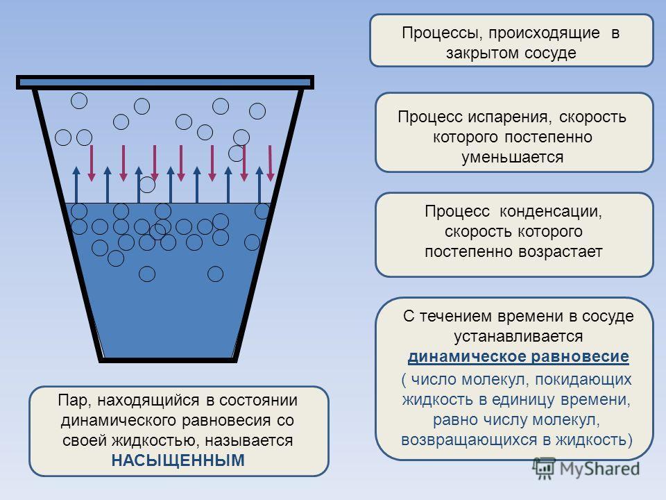 Процессы, происходящие в закрытом сосуде Процесс испарения, скорость которого постепенно уменьшается Процесс конденсации, скорость которого постепенно возрастает С течением времени в сосуде устанавливается динамическое равновесие ( число молекул, пок