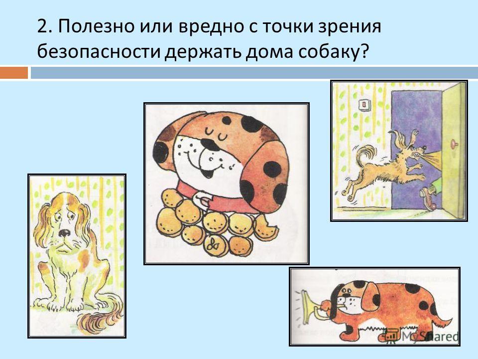 2. Полезно или вредно с точки зрения безопасности держать дома собаку ?