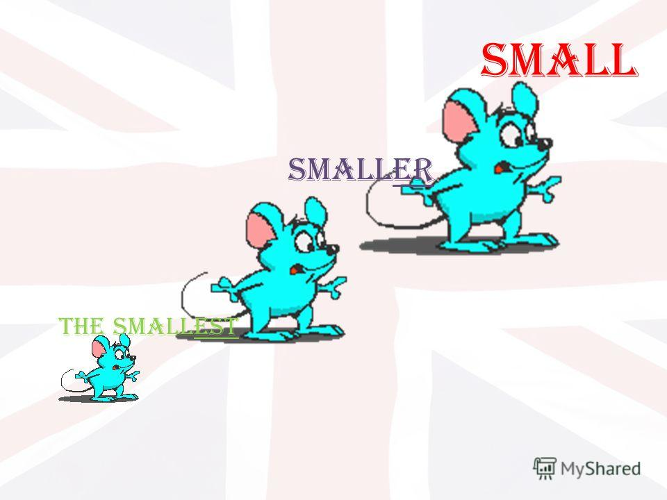 Small Smaller The smallest