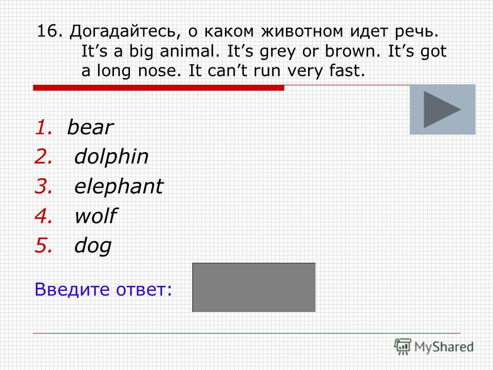 16. Догадайтесь, о каком животном идет речь. Its a big animal. Its grey or brown. Its got a long nose. It cant run very fast. 1.bear 2. dolphin 3. elephant 4. wolf 5. dog Введите ответ: