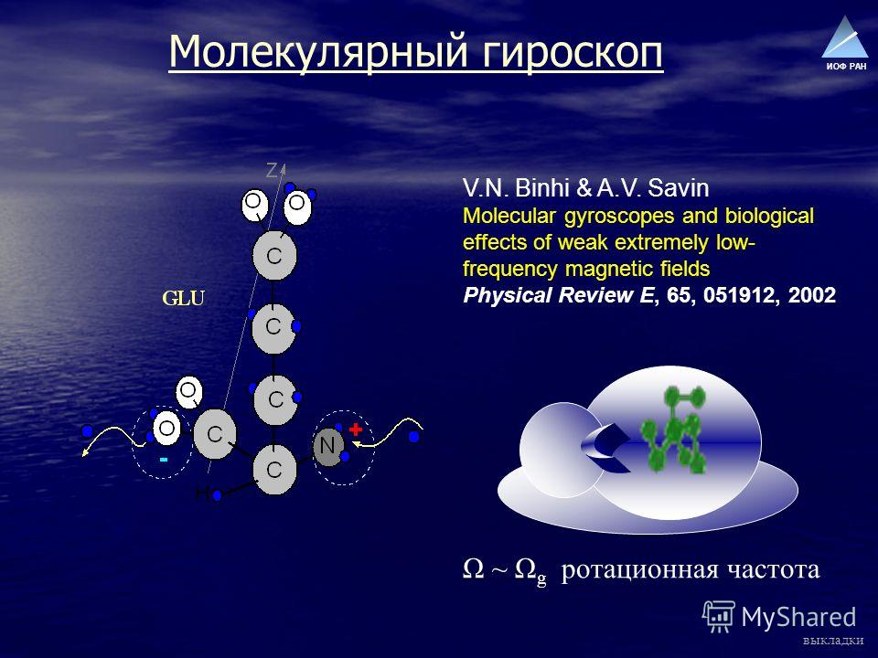 ИОФ РАН Молекулярный гироскоп V.N. Binhi & A.V. Savin Molecular gyroscopes and biological effects of weak extremely low- frequency magnetic fields Physical Review E, 65, 051912, 2002 Ω ~ Ω g ротационная частота выкладки