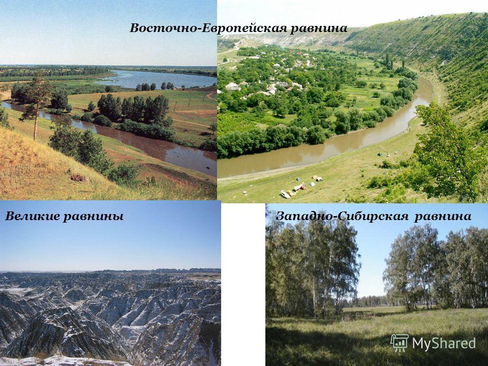 35 Восточно-Европейская равнина Великие равниныЗападно-Сибирская равнина