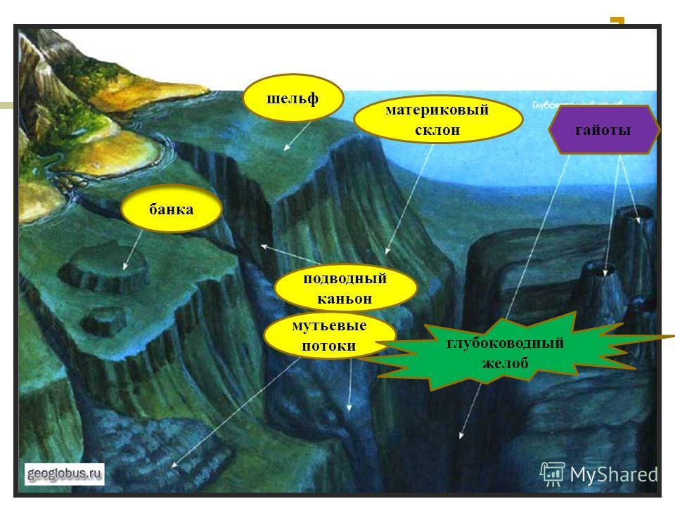 62 банка шельф материковый склон подводный каньон мутьевые потоки глубоководный желоб гайоты