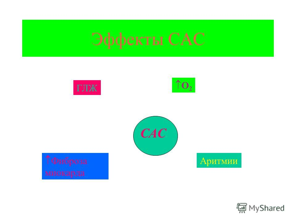 Эффекты САС САС O 2 Фиброза миокарда ГЛЖ Аритмии