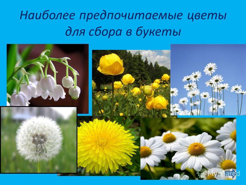 Наиболее предпочитаемые цветы для сбора в букеты