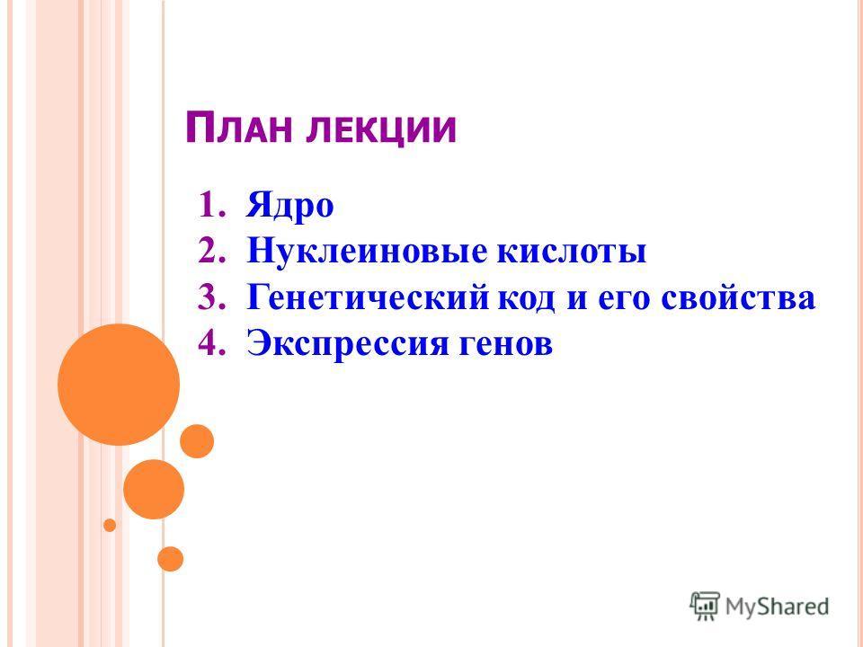 П ЛАН ЛЕКЦИИ 1.Ядро 2.Нуклеиновые кислоты 3.Генетический код и его свойства 4.Экспрессия генов