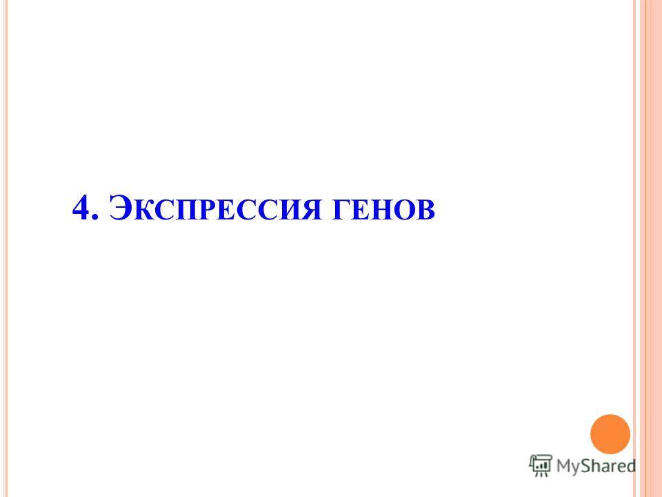 4. Э КСПРЕССИЯ ГЕНОВ