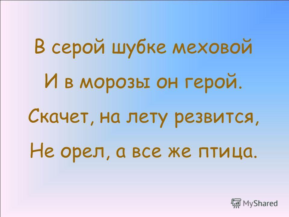 22.11.20133 ворона http://www.deti-66.ru/