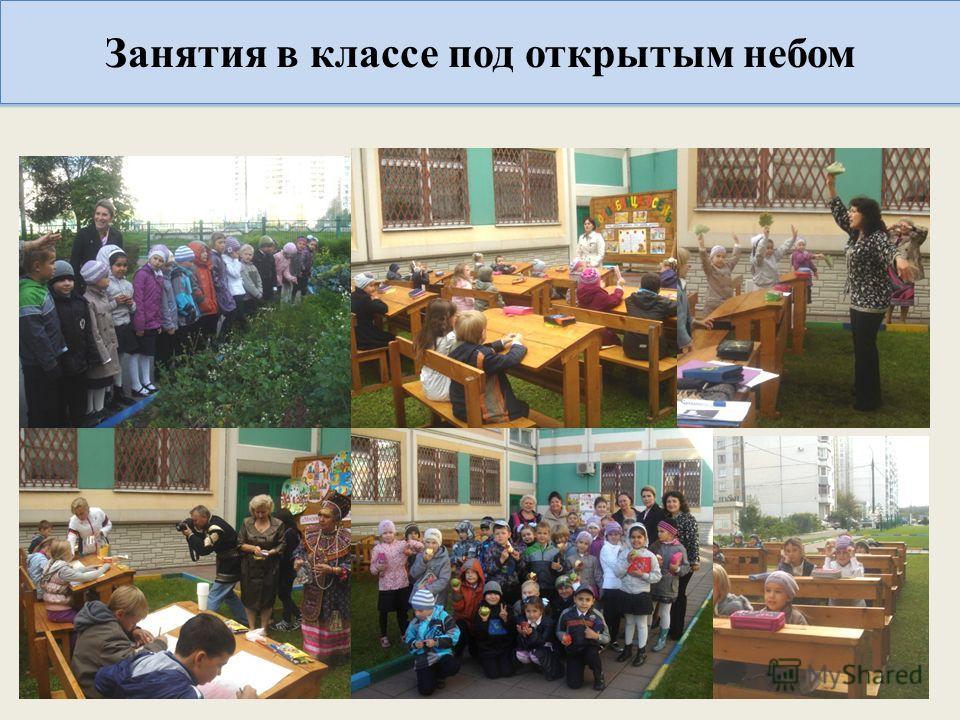 Занятия в классе под открытым небом