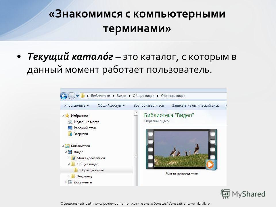 Текущий катало́г – это каталог, с которым в данный момент работает пользователь. «Знакомимся с компьютерными терминами» Официальный сайт: www.pc-newcomer.ru Хотите знать больше? Узнавайте: www.vizivik.ru
