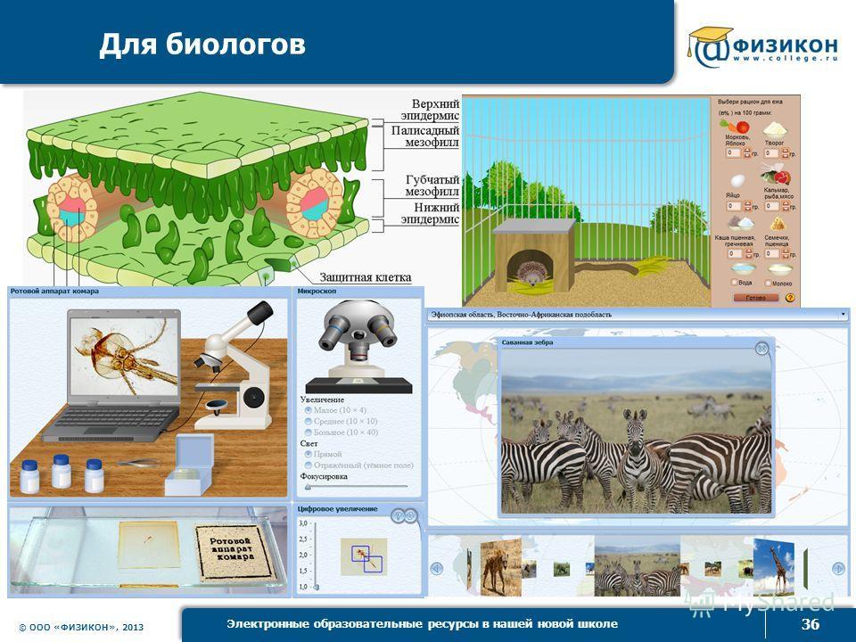 © ООО «ФИЗИКОН», 2013 36 Электронные образовательные ресурсы в нашей новой школе Для биологов