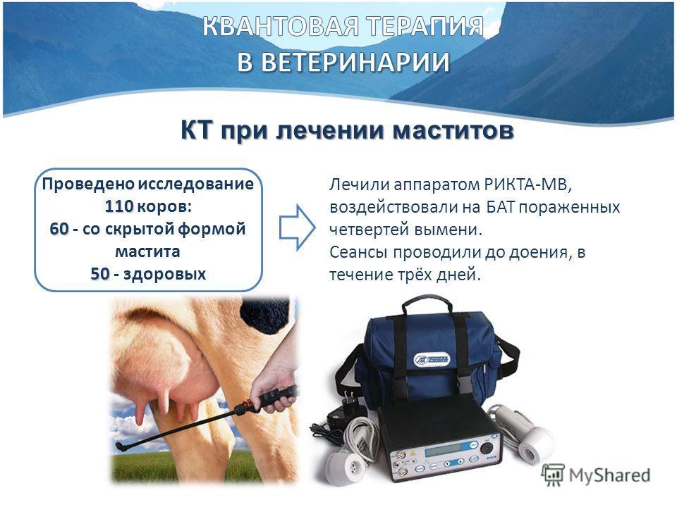 КТ при лечении маститов 110 Проведено исследование 110 коров: 60 60 - со скрытой формой мастита 50 50 - здоровых Лечили аппаратом РИКТА-МВ, воздействовали на БАТ пораженных четвертей вымени. Сеансы проводили до доения, в течение трёх дней.