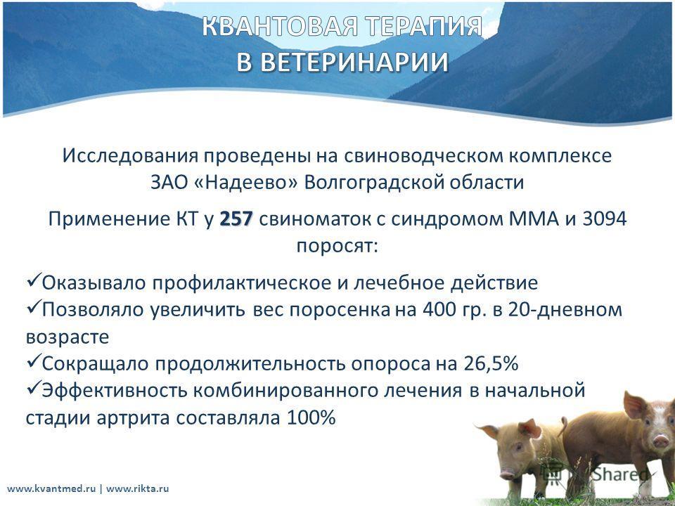 Исследования проведены на свиноводческом комплексе ЗАО «Надеево» Волгоградской области 257 Применение КТ у 257 свиноматок с синдромом ММА и 3094 поросят: Оказывало профилактическое и лечебное действие Позволяло увеличить вес поросенка на 400 гр. в 20