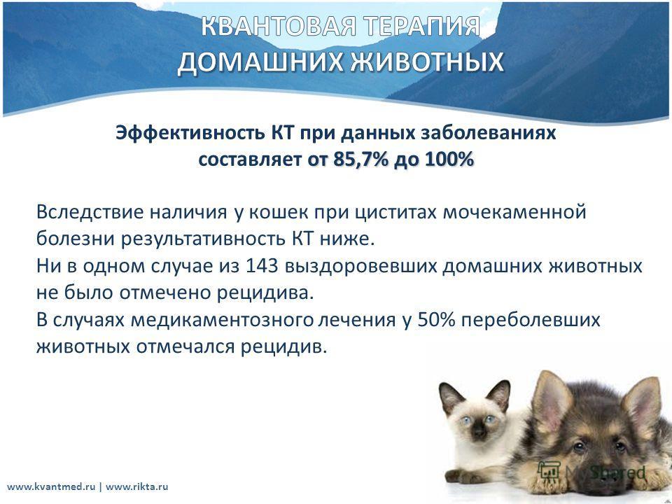 Эффективность КТ при данных заболеваниях от 85,7% до 100% составляет от 85,7% до 100% Вследствие наличия у кошек при циститах мочекаменной болезни результативность КТ ниже. Ни в одном случае из 143 выздоровевших домашних животных не было отмечено рец