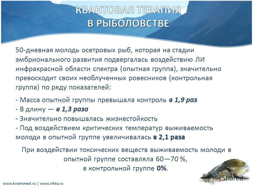 www.kvantmed.ru | www.rikta.ru 50-дневная молодь осетровых рыб, которая на стадии эмбрионального развития подвергалась воздействию ЛИ инфракрасной области спектра (опытная группа), значительно превосходит своих необлученных ровесников (контрольная гр