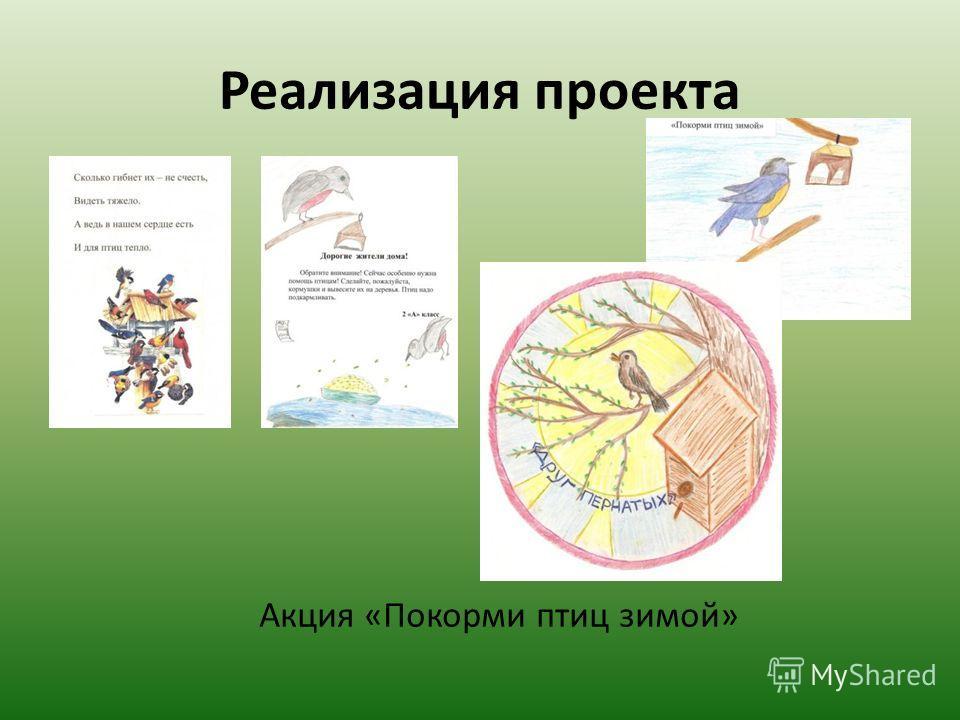 Реализация проекта Акция «Покорми птиц зимой»