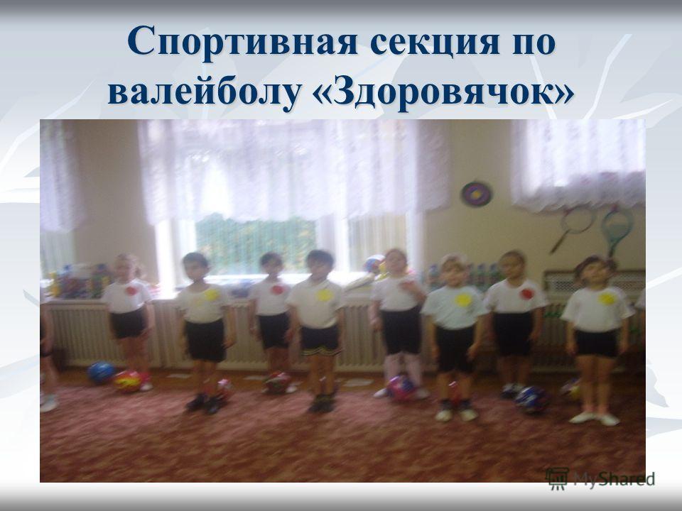 Спортивная секция по валейболу «Здоровячок»