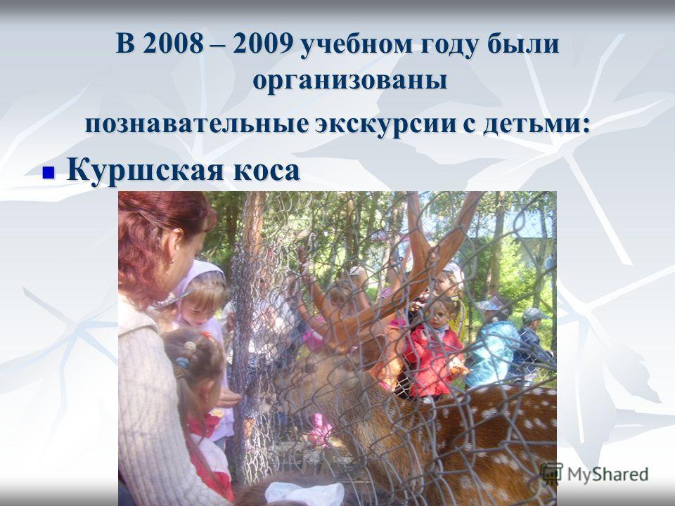 В 2008 – 2009 учебном году были организованы познавательные экскурсии с детьми: Куршская коса Куршская коса