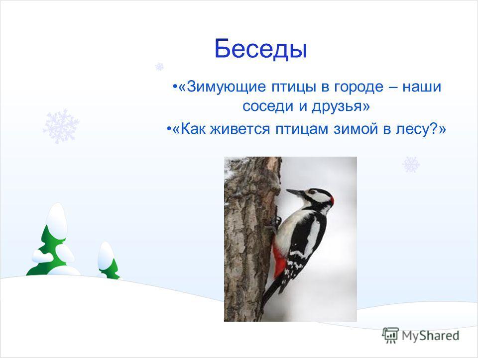 «Зимующие птицы в городе – наши соседи и друзья» «Как живется птицам зимой в лесу?»