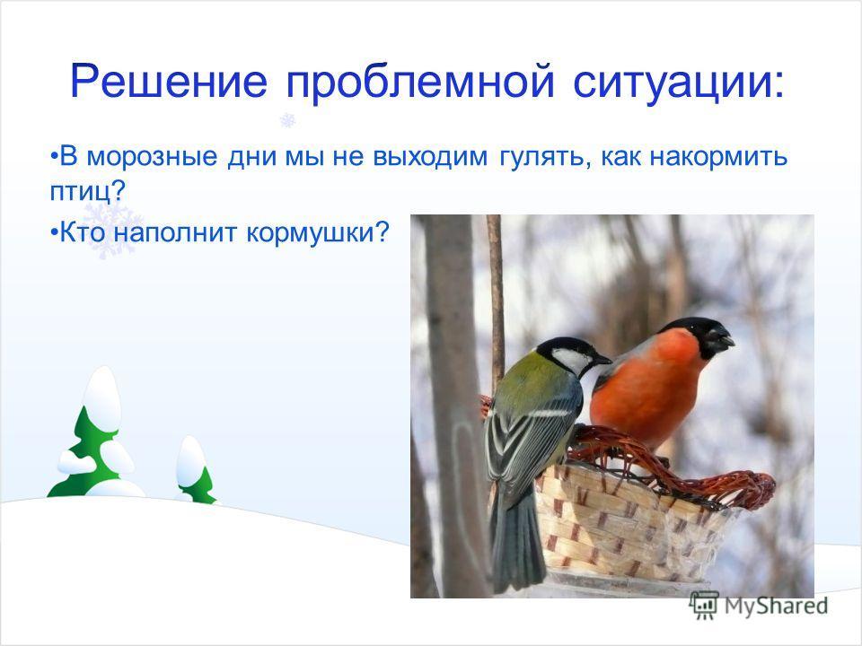 В морозные дни мы не выходим гулять, как накормить птиц? Кто наполнит кормушки?