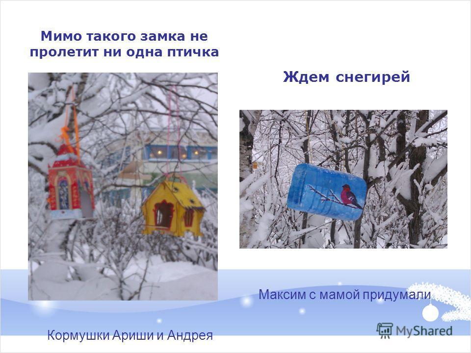 Мимо такого замка не пролетит ни одна птичка Ждем снегирей Кормушки Ариши и Андрея Максим с мамой придумали