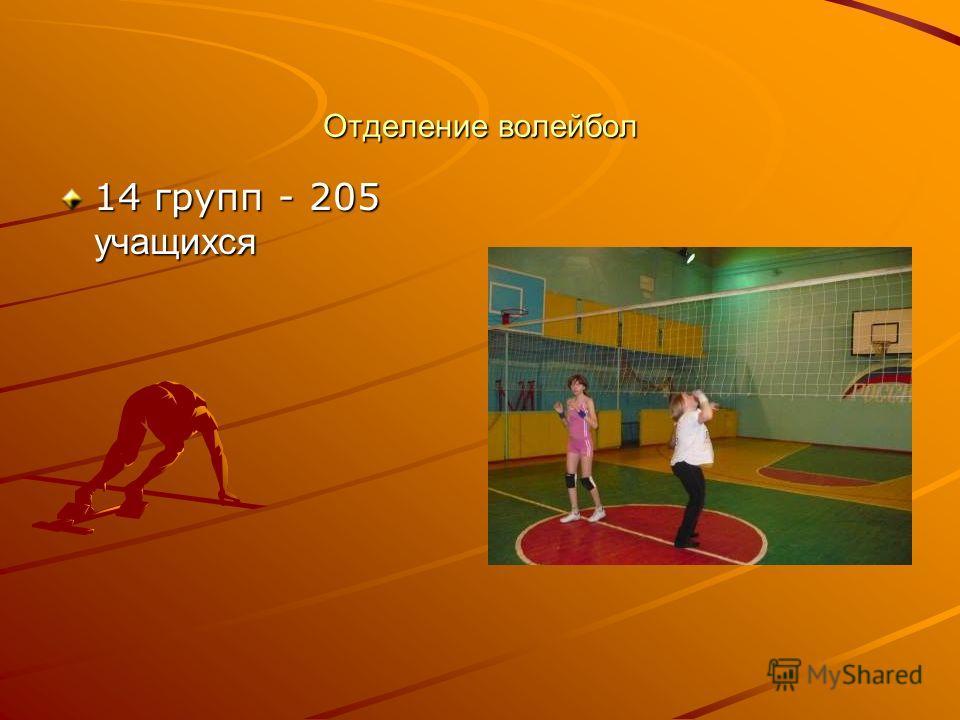Отделение волейбол 14 групп - 205 учащихся