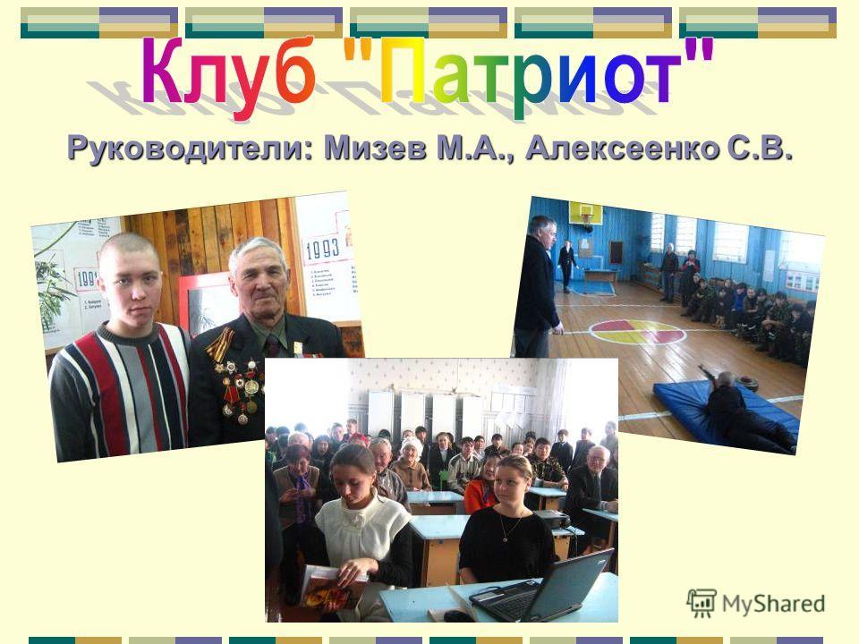 Руководители: Мизев М.А., Алексеенко С.В.