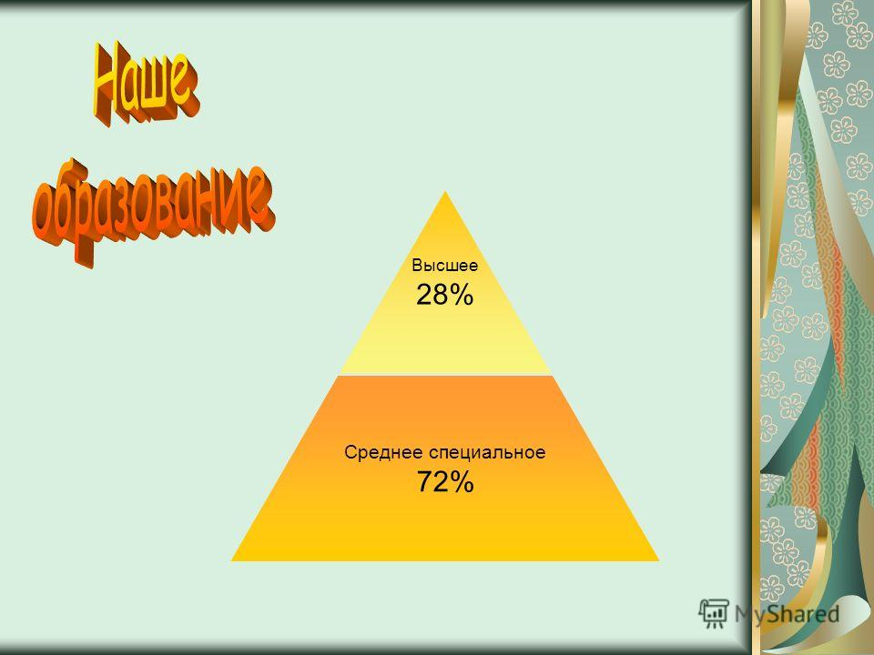 Высшее 28% Среднее специальное 72%