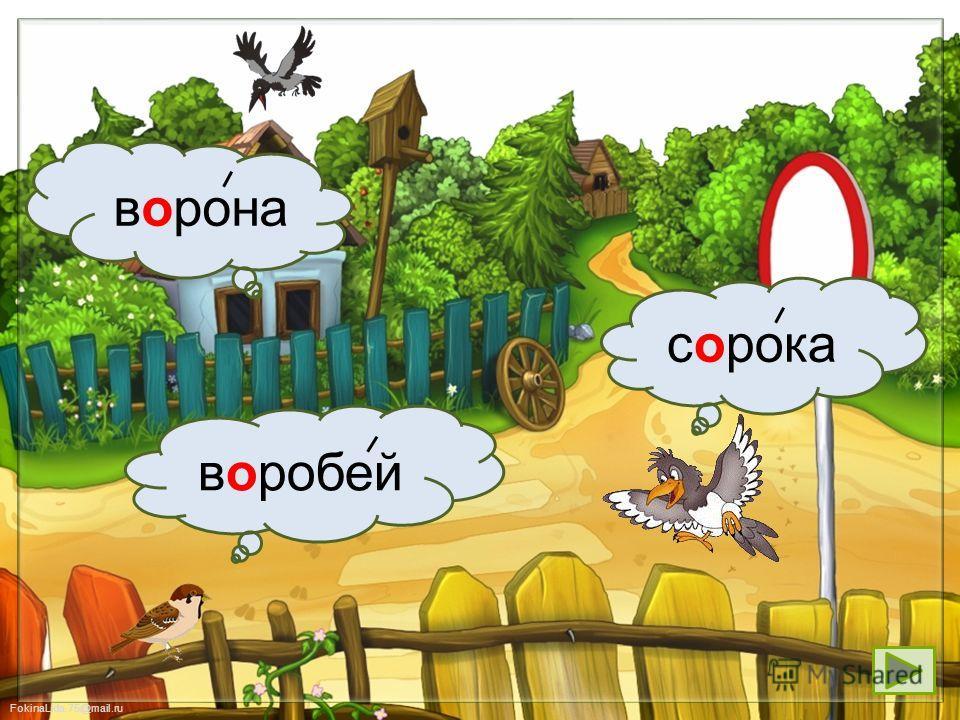 FokinaLida.75@mail.ru собакапетухкорова