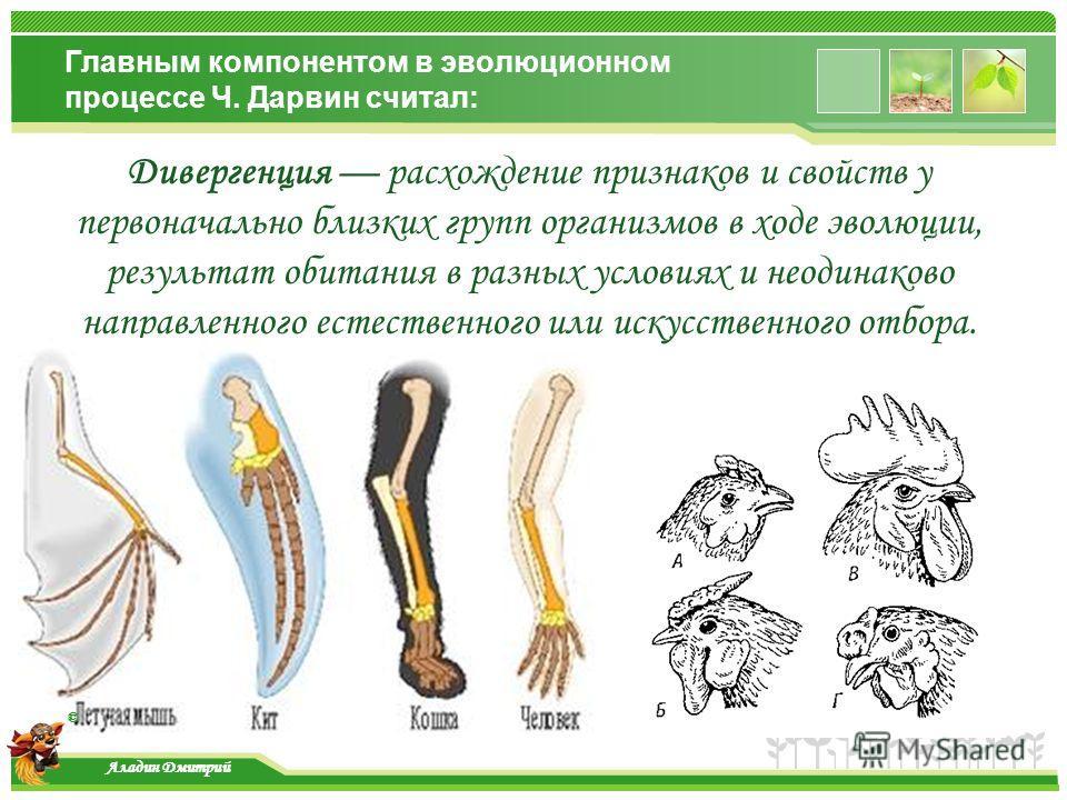 www.themegallery.com Главным компонентом в эволюционном процессе Ч. Дарвин считал: Дивергенция расхождение признаков и свойств у первоначально близких групп организмов в ходе эволюции, результат обитания в разных условиях и неодинаково направленного