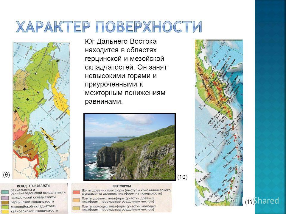 Юг Дальнего Востока находится в областях герцинской и мезойской складчатостей. Он занят невысокими горами и приуроченными к межгорным понижениям равнинами. (9) (10) (11)