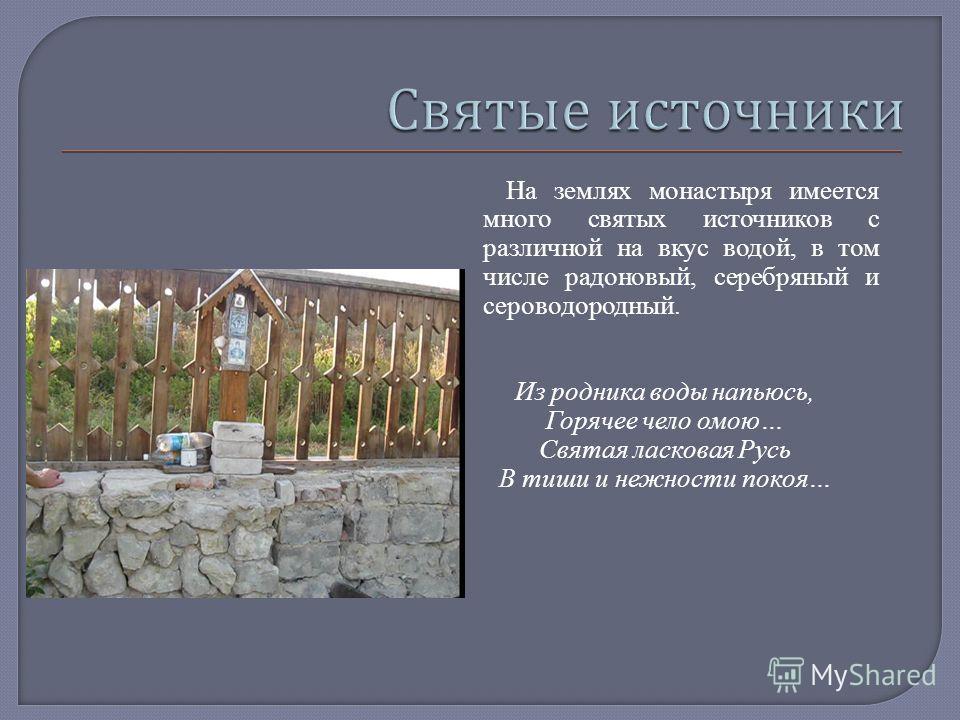 На землях монастыря имеется много святых источников с различной на вкус водой, в том числе радоновый, серебряный и сероводородный. Из родника воды напьюсь, Горячее чело омою… Святая ласковая Русь В тиши и нежности покоя…