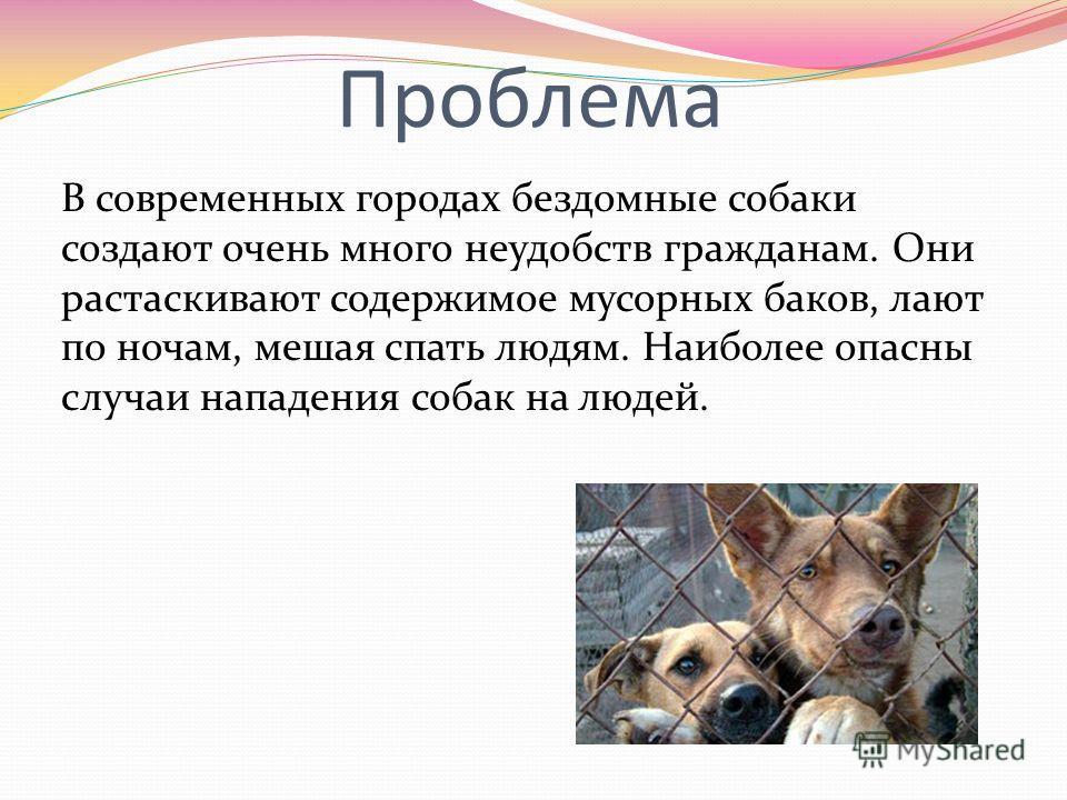Проблема В современных городах бездомные собаки создают очень много неудобств гражданам. Они растаскивают содержимое мусорных баков, лают по ночам, мешая спать людям. Наиболее опасны случаи нападения собак на людей.