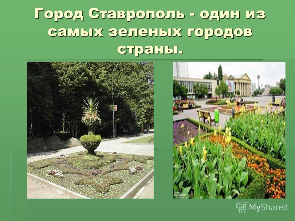 Город Ставрополь - один из самых зеленых городов страны.