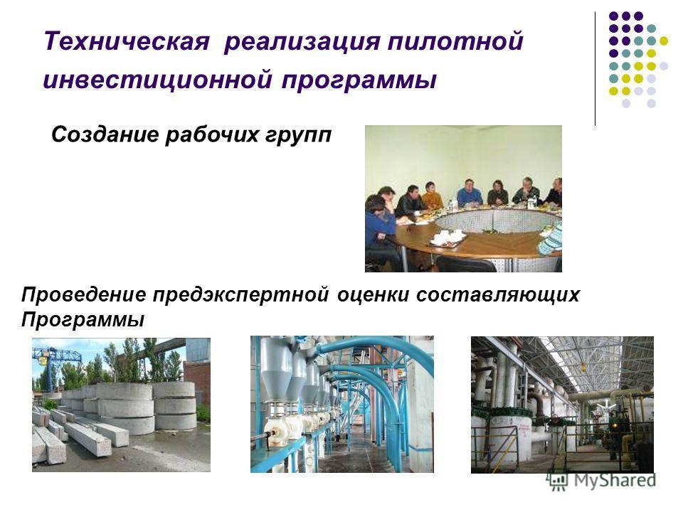 Создание рабочих групп Проведение предэкспертной оценки составляющих Программы Техническая реализация пилотной инвестиционной программы