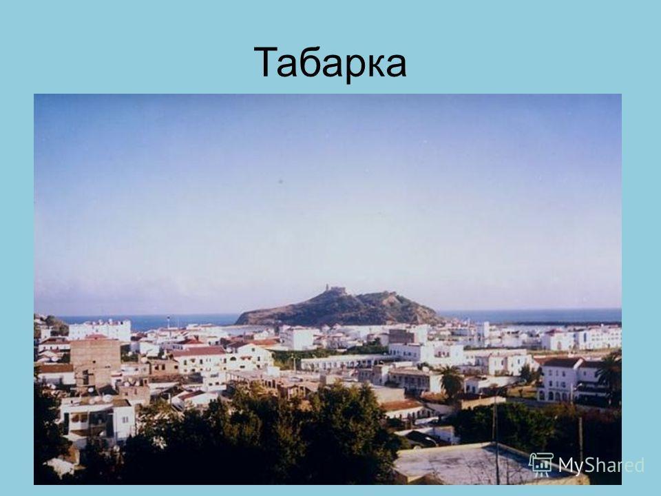 Табарка
