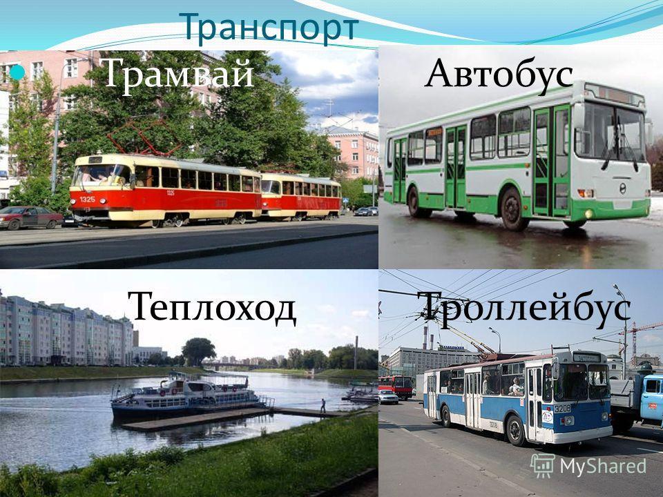 Транспорт Трамвай Автобус Теплоход Троллейбус
