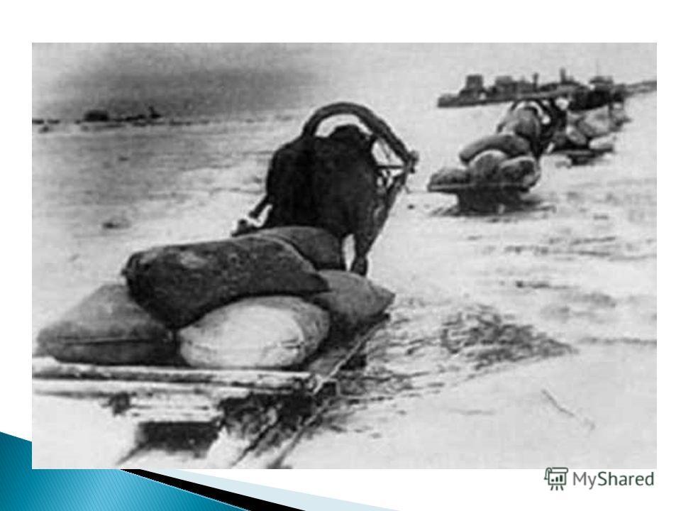 Кольцо блокады сжималось, враг подходил всё ближе. Налёты самолётов становились всё чаще. И только одна дорога осталась, по которой можно было вывести больных, детей, раненых и привезти муку и крупу. Эта дорога проходила по льду Ладожского озера. Лад